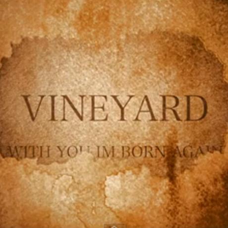 Vineyard With You Im Born Again